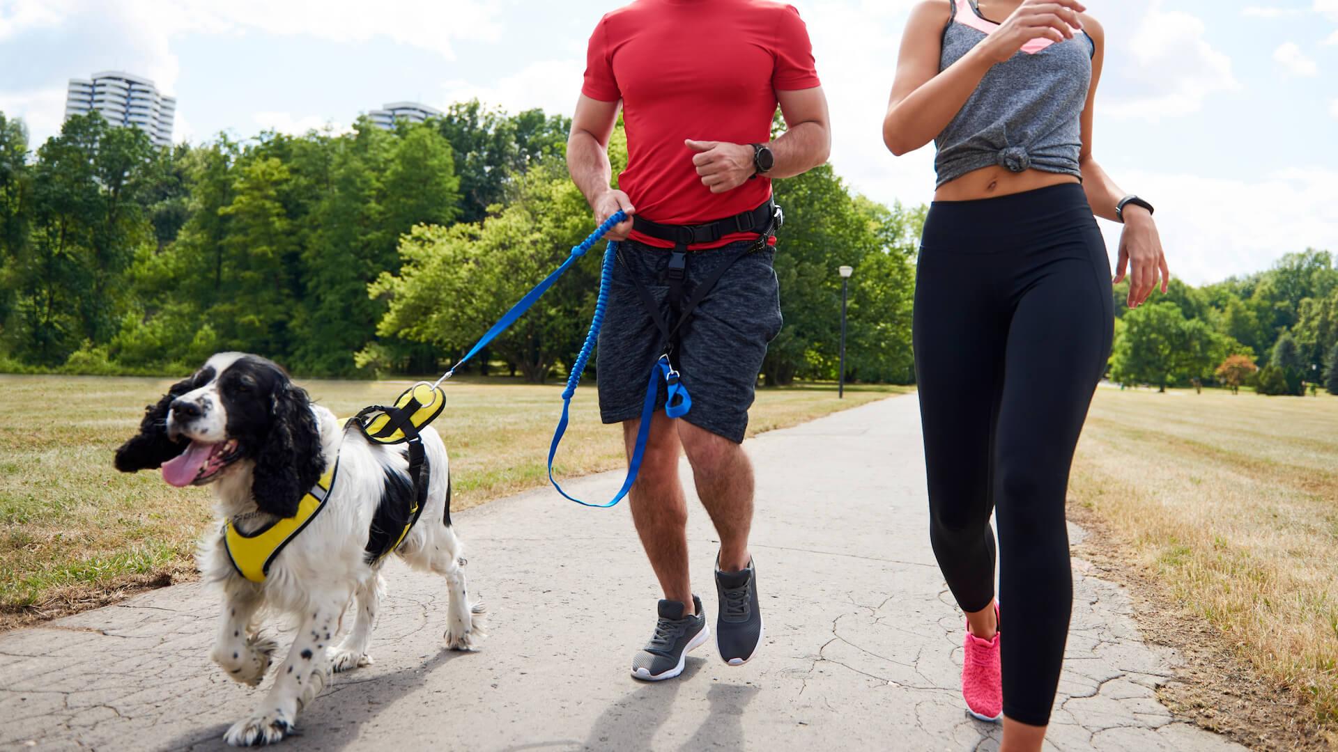 Corsa con cane