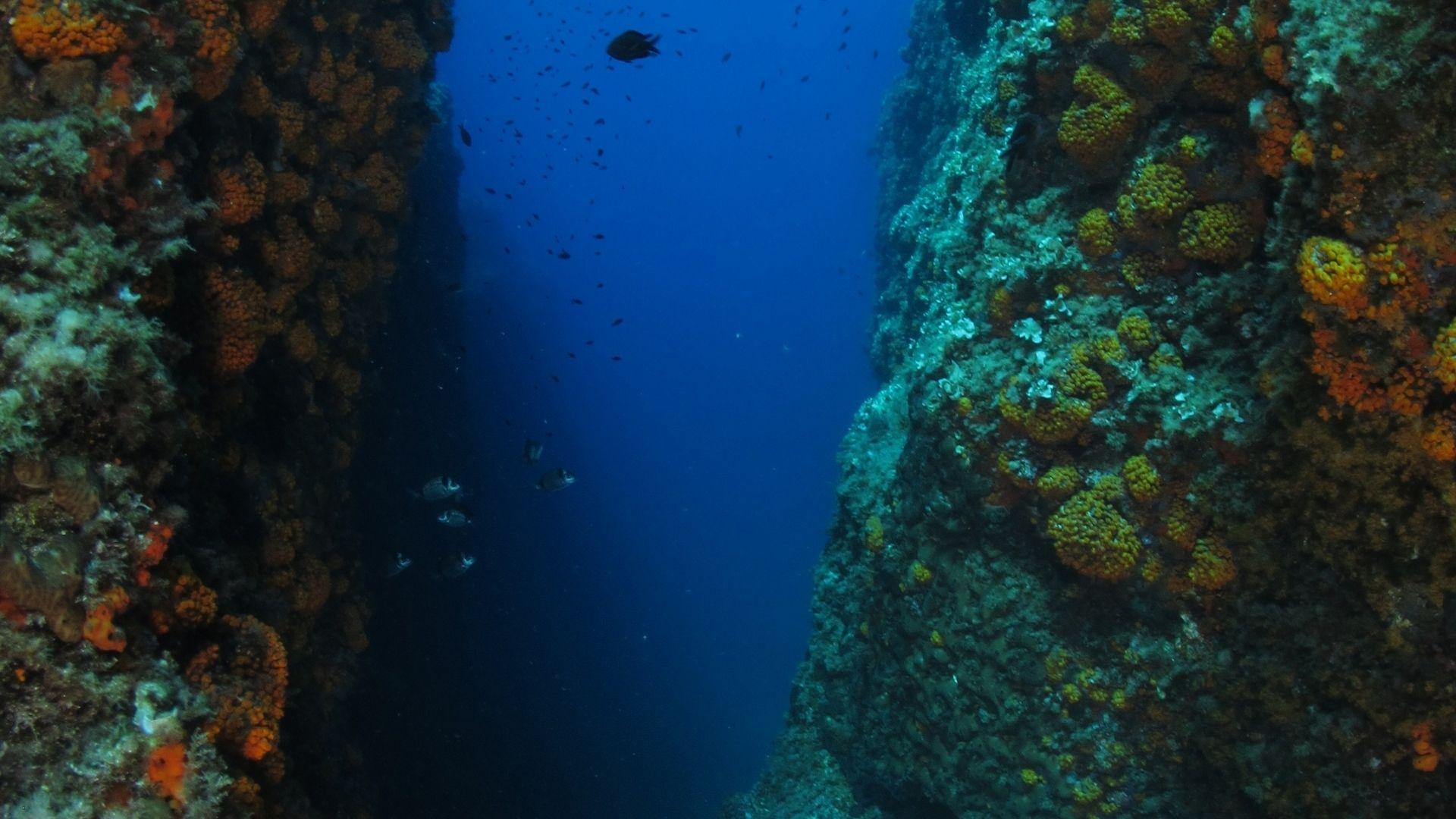Battesimo del mare e snorkeling