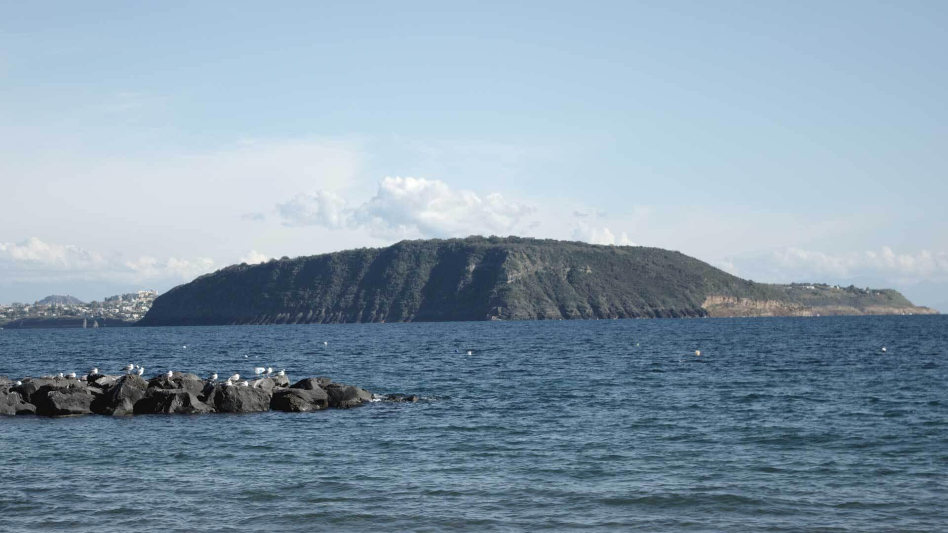 L'Isola di Vivara, a due passi dall'isola di Procida