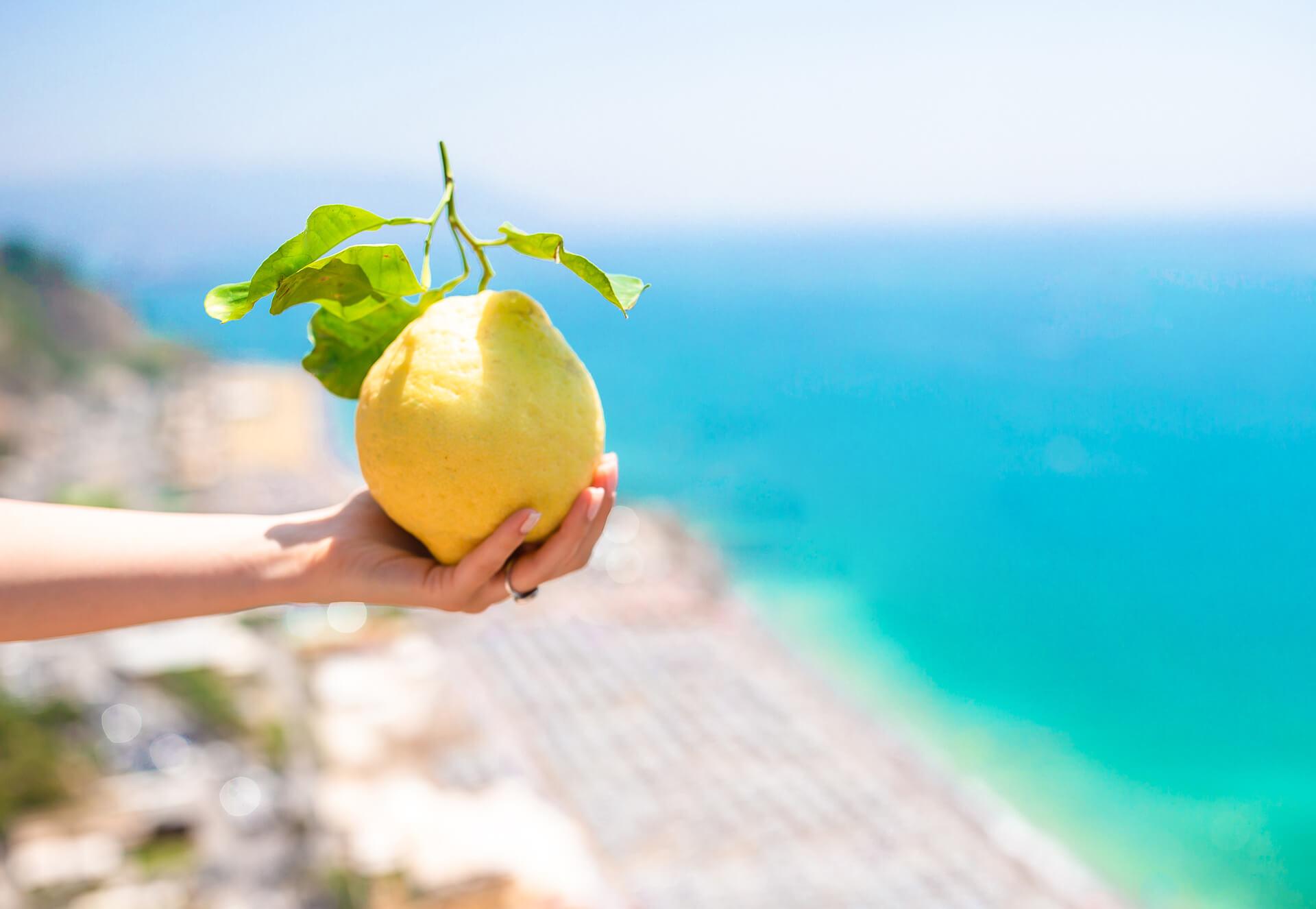 Limone con il mare e la costa sullo sfondo