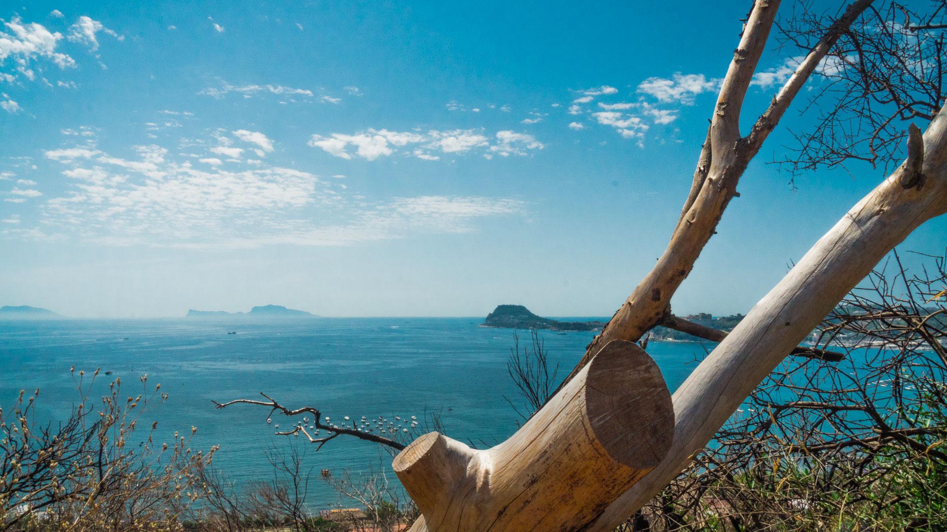 L'Oasi naturalistica di Monte Nuovo, un vulcano sorprendente