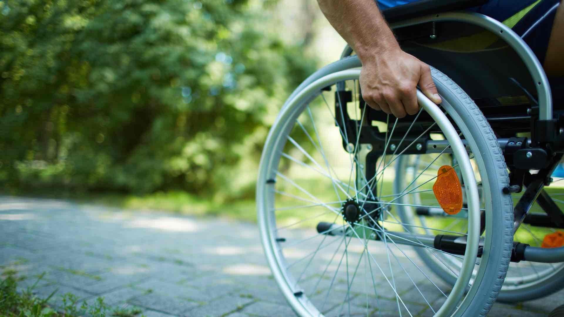 Sedia a rotelle in un parco
