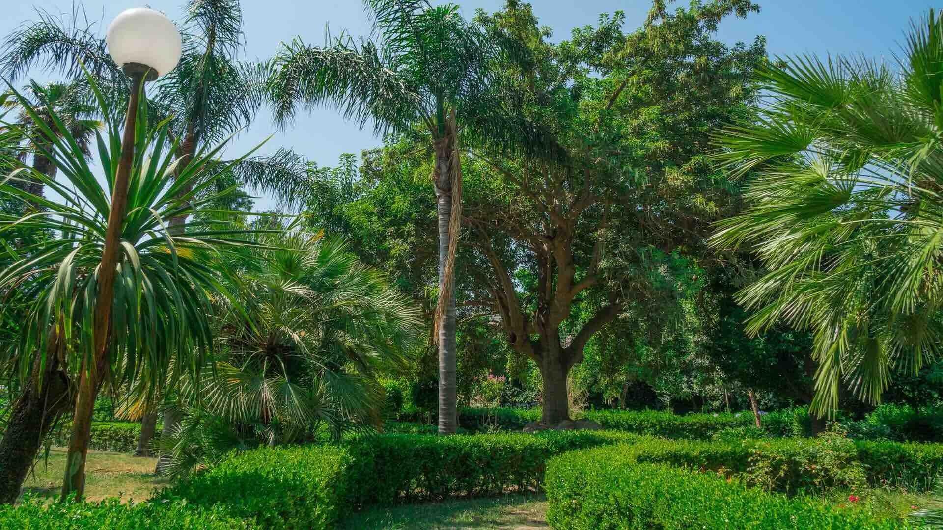 Villa Avellino - De Gemmis, il cuore verde di Pozzuoli