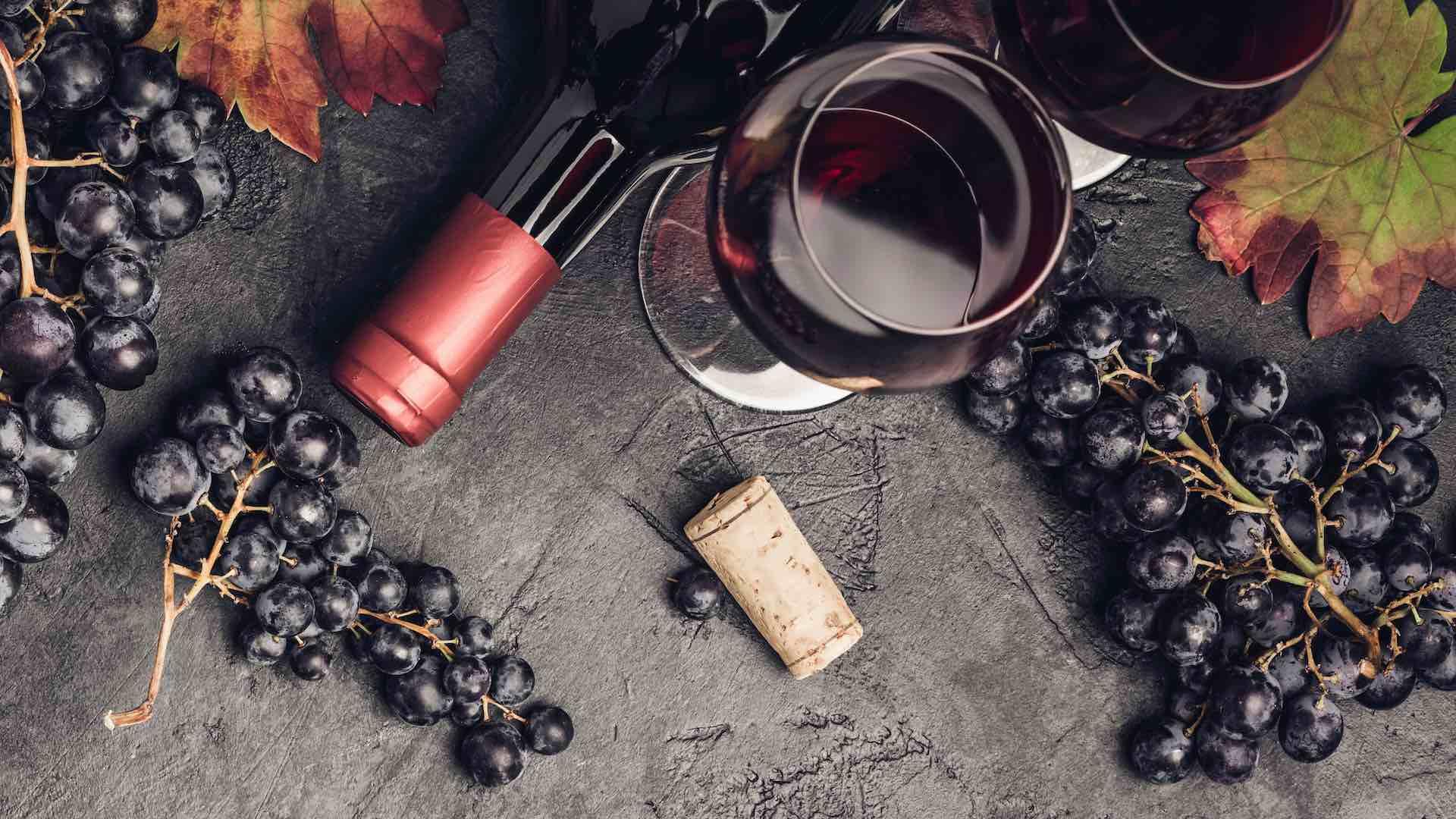 Vesuvio Trekking & Wine