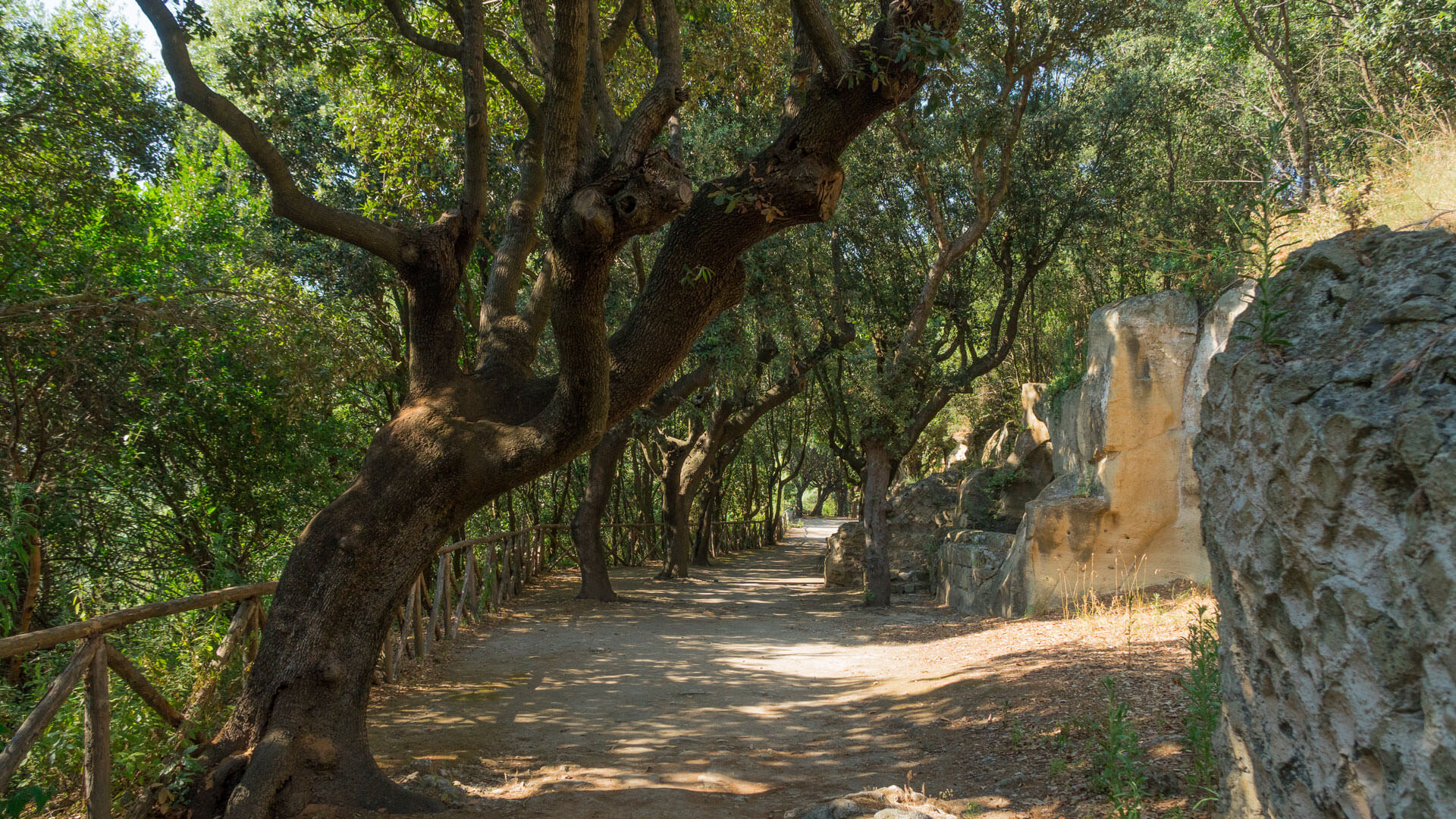 La necropoli di Cuma e le sue tombe dipinte